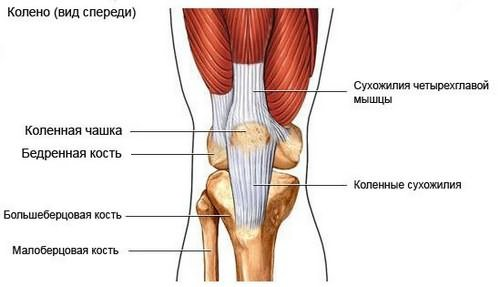 pregătire comună rusvisk artrita genunchiului ce sa faci