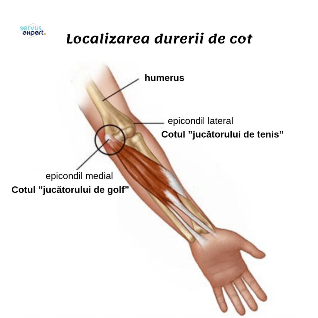 durerea articulației cotului și a degetului mare