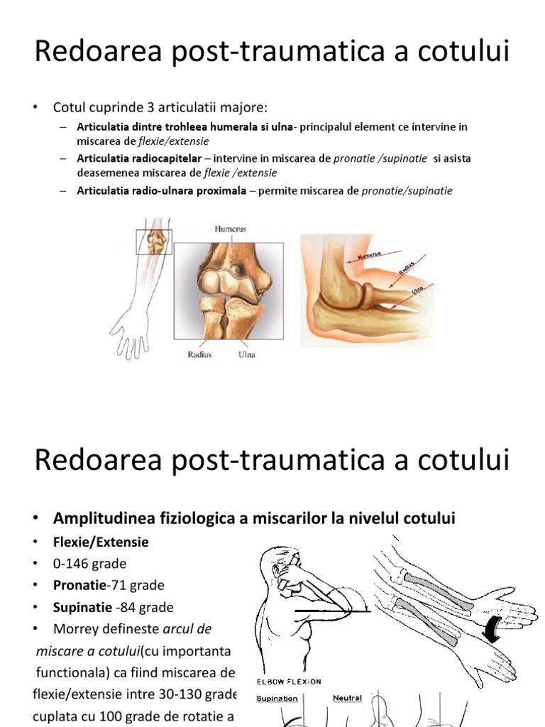 artroza care deformează articulația umărului 2-3 grade artroza consecințelor șoldului