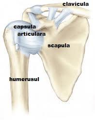 după exercițiu  durere în articulația umărului