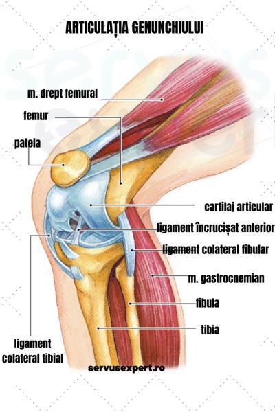 cauza durerii și deformării genunchiului