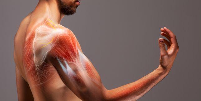 dieta pentru dureri la nivelul articulațiilor și mușchilor cum să tratezi un nerv în articulația șoldului