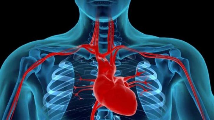 artrita sau simptomele articulare ale artrozei artrita mâinilor și tratament