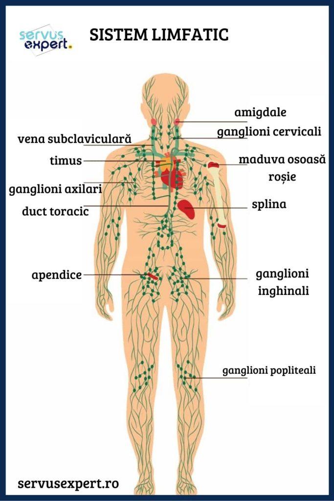 dispozitivul ameliorează durerile articulare boala articulației vag