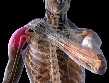 cel mai bun remediu pentru durerile de umăr dureri la nivelul articulațiilor genunchiului în