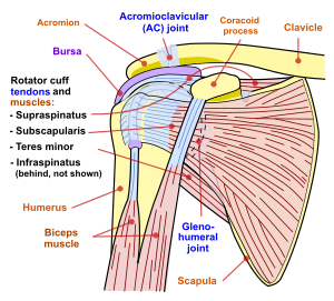 Articulația doare sub sarcină, Cauza durerii articulare plictisitoare