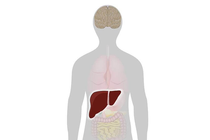 dureri articulare cu boli de ficat