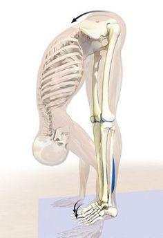 inflamația articulară ameliorează durerea tratează osteoartroza genunchiului