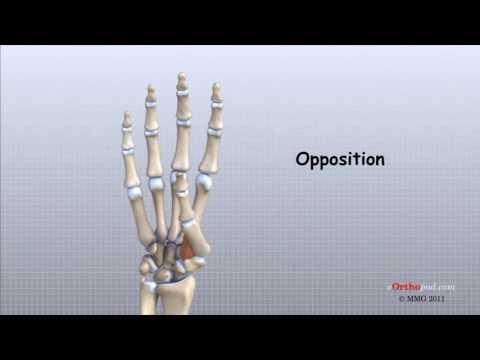 tratament articular în Cherkasy cum se vindeca durerea în articulațiile mâinilor